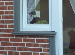 Fensterbank_Fensterbänke_Niessen_SLB 590_40